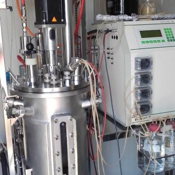 Fermentatore per la produzione di biomasse microbiche
